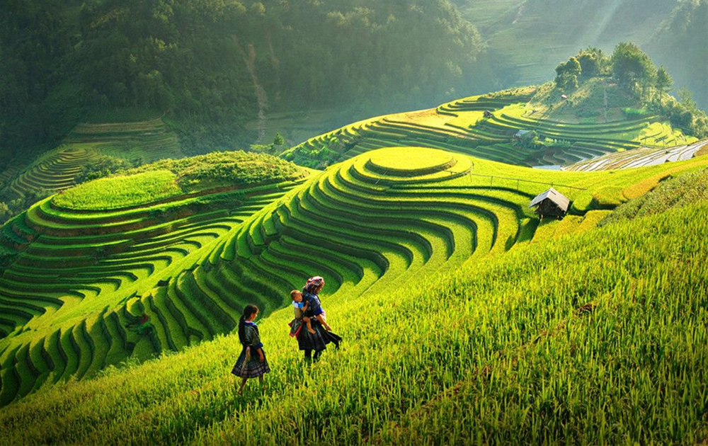 Vietnam is famous for natural landscapes, history, and tourism