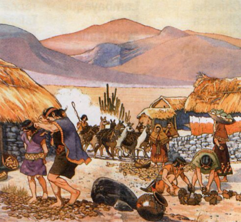 Daily life of Incan